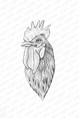 Rooster Sketch Drawing