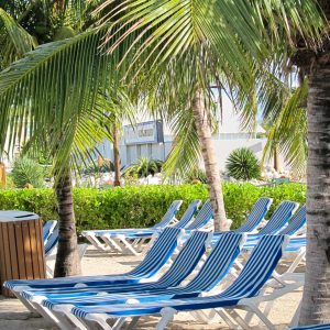 Nassau-Bahamas-chairs-palm-trees-Sept-2011
