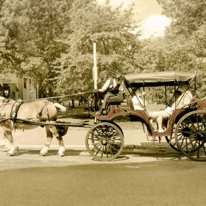 Philadelphia-Pennsylvania-Horse-Carriage-Aug-2012